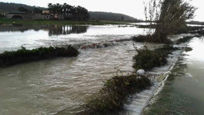 Campos inundados