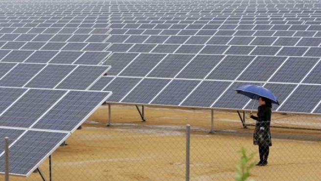 Placas solares en una planta de energía fotovoltaica.