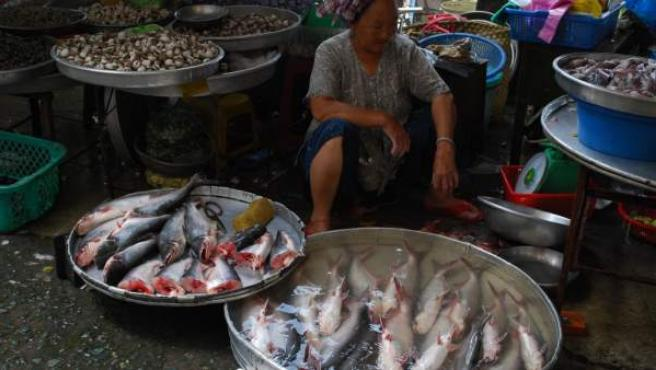 Ejemplares de panga en un mercado de Vietnam.