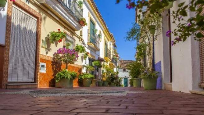 Proyecto 'Estepona, Jardín de la Costa del Sol'