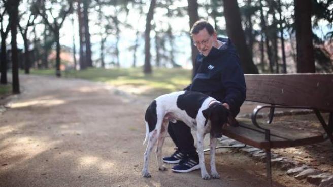 Mariano Rajoy, con su perro Rico, haciendo una pausa tras su carrera matutina.