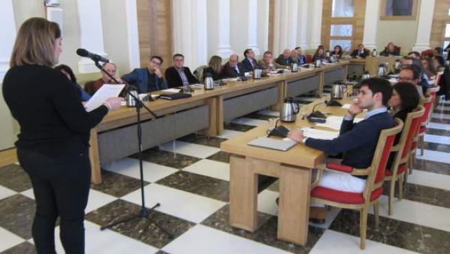 Plataforma de víctimas del Alvia interviene en el Pleno del Ayto de Cáceres