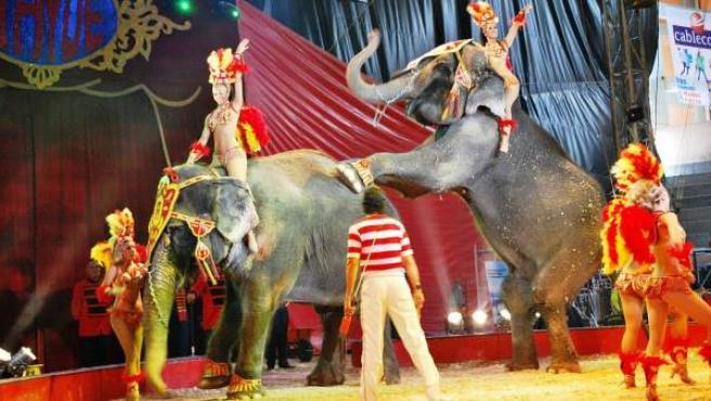 Una imagen de una representación circense en México, donde ahora está prohibido el uso de animales.