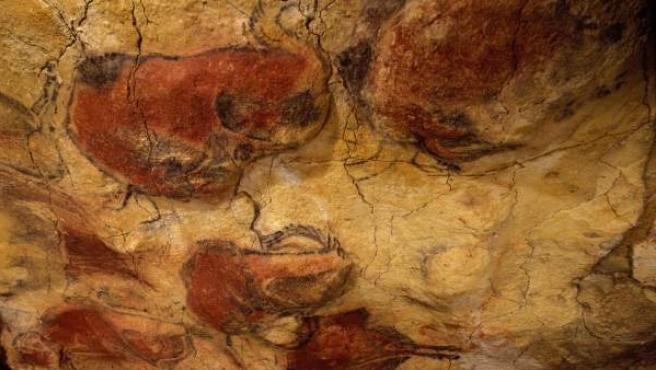 Bisontes de Altamira