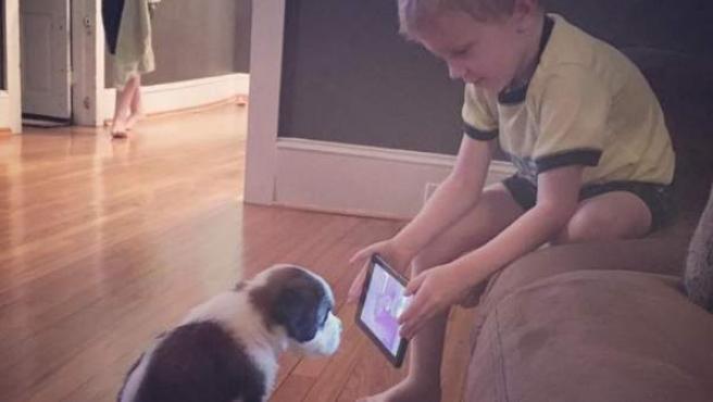 Imagen viral de un niño tratando de adiestrar a su perro con tutoriales de YouTube.