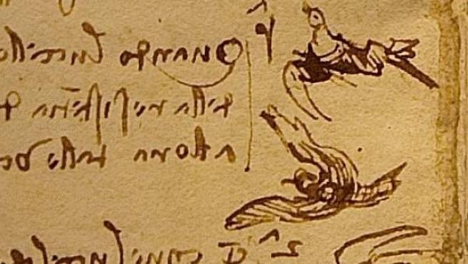 Detalle de una de las páginas del 'Códice del vuelo de las aves', de Leonardo da Vinci.