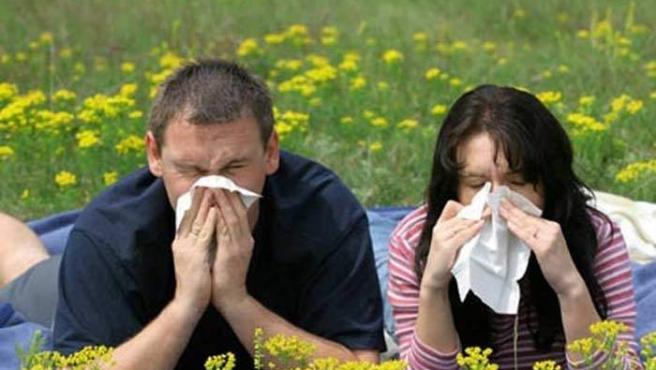 La alergia al polen es la más frecuente en España.