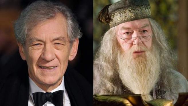 Ian Mckellen pudo ser Albus Dumbledore.