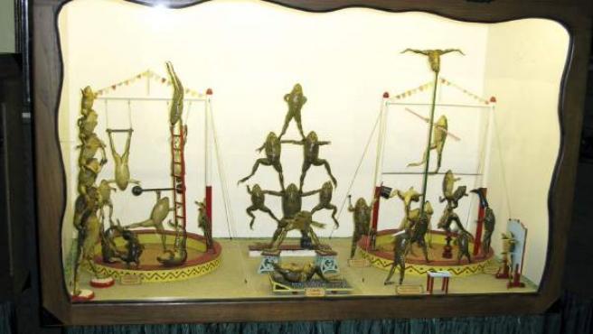 Fotografía facilitada por el Museo Froggyland de Split de su exposición, una muestra de medio millar de ranas disecadas en diversas posiciones y escenas de la vida humana.