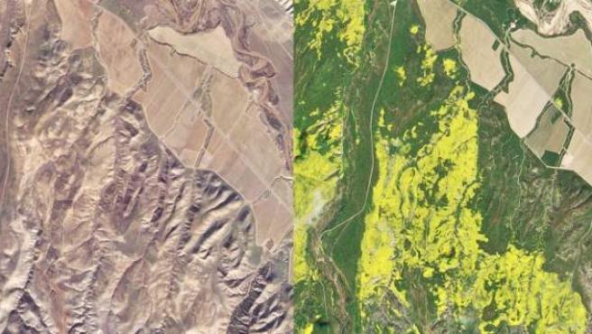 Imagen comparativa del mismo terreno del Bosque Nacional de Los Padres, en California, Estados Unidos.