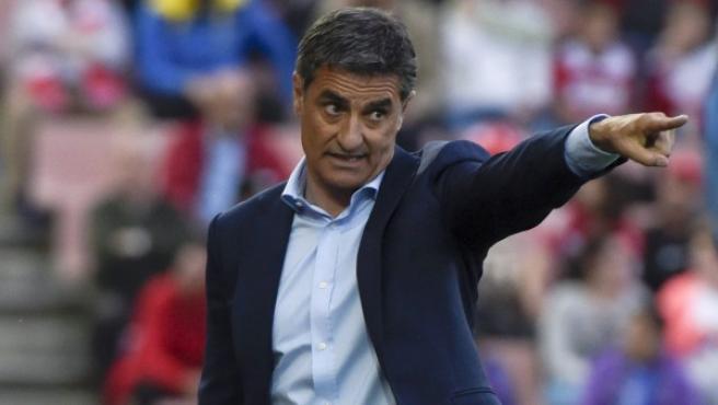 El entrenador del Málaga, Míchel.