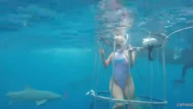 Fotograma del vídeo en el que la actriz porno es atacada por un tiburón.