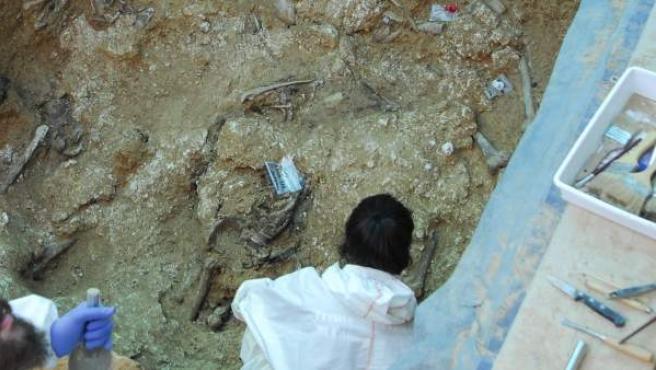 Hallan al menos 12 cuerpos en la fosa 113 del Cementerio de Paterna.