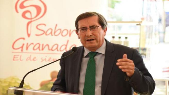 Nota Y Fotos Sabor Granada Corpus