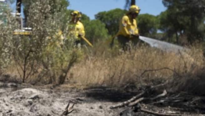 Efectivos del Infoca realizan tareas de refresco una vez controlado el fuego en Doñana.