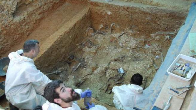 Troben almenys 12 cossos en la fossa 113 del Cementeri de Paterna