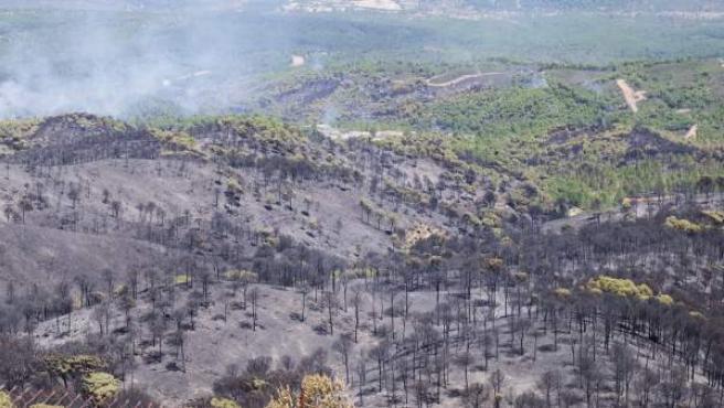 Aspecto tras el incendio forestal declarado en Minas de Riotinto, en Huelva.
