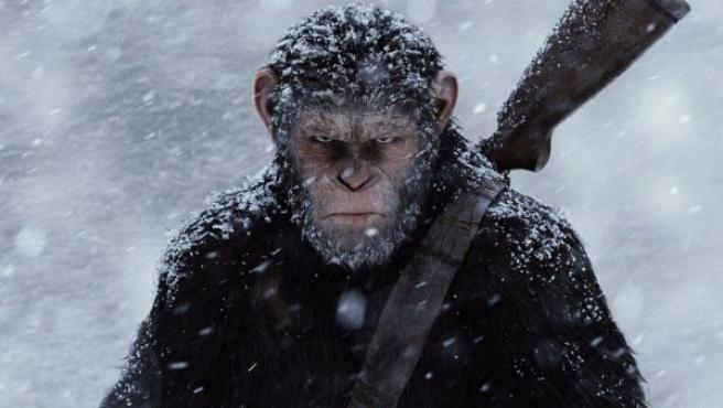 Fotograma de la tercera entrega de la nueva saga de los simios.