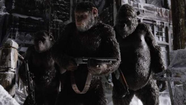 Una imagen de 'La Guerra Del Planeta De Los Simios'