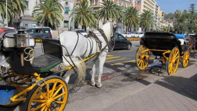 Coches de caballos esperando al sol a los turistas.