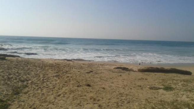 Playa de El Palmar (Cádiz), en una imagen de archivo.