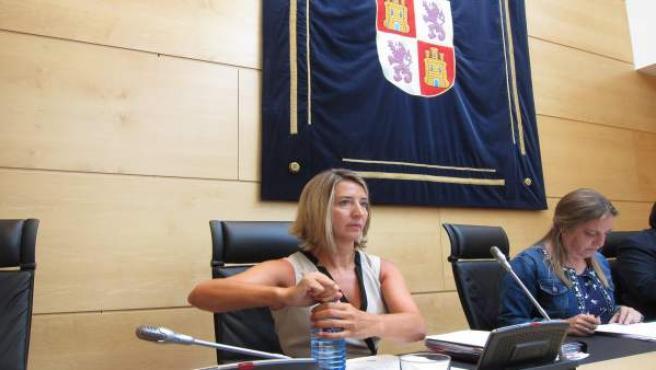 García en las Cortes para explicar la actuación ante el caso de la pequeña Sara