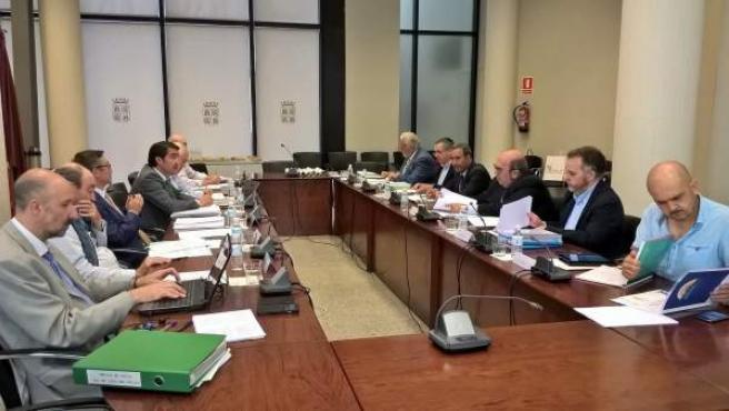 Reunión Comisión Picos de Europa.