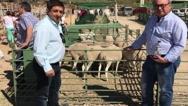 Reyes visita el Centro de Tipificación Ganadera de Santiago- Pontones