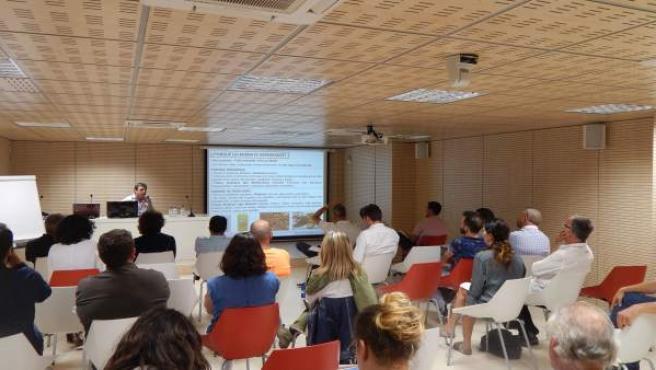 Es una de las conclusiones del seminario de olivicultura