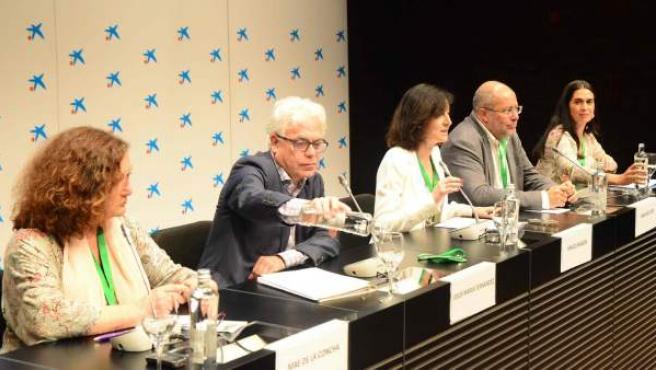 Mae de la Concha (Podemos), Jesús María Fernández (PSOE), la jurista Araceli Manjón, Francisco Igea (Podemos) y Carmen Hernández (PP).