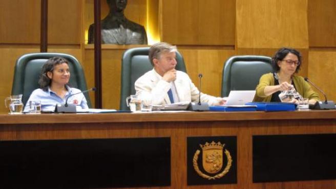 El Alcalde, Pedro Santisteve, Preside El Pleno.