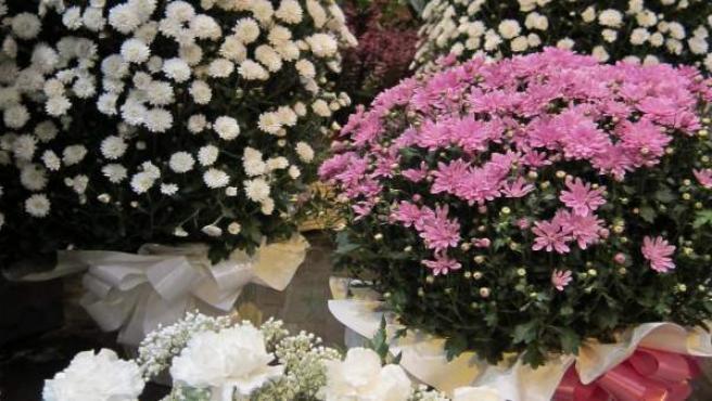 Centros de flores para Todos los Santos, de la Floristería Los Sitios