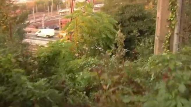 Imagen de la zona de difícil acceso en Irun donde fue hallada una joven maniatada y en coma.