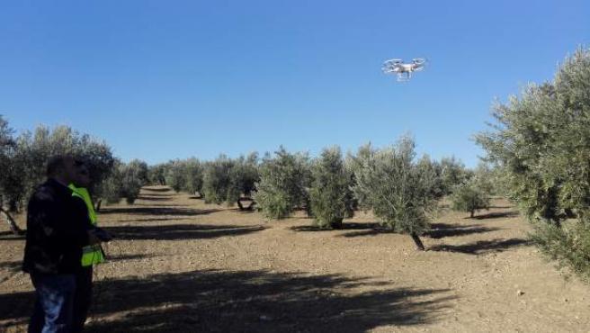 Prácticas para pilotar drones en agricultura de precisión.