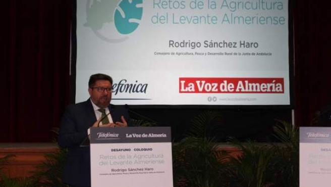 Sánchez de Haro durante su intervención