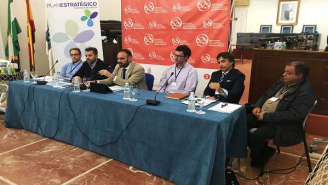 Comisión de Pesca del Plan Estratégico Provincial de Huelva.