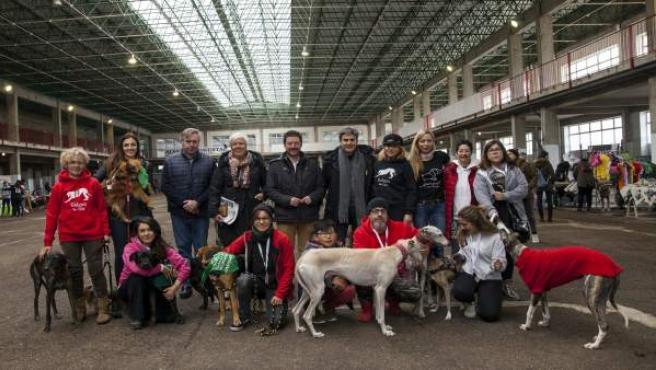 Feria Adopción Torrelavega