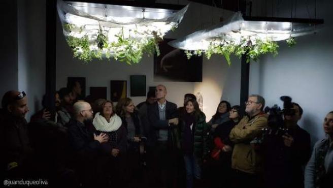 Luces de Barrio- Arboleda Digital en la Casa Murillo