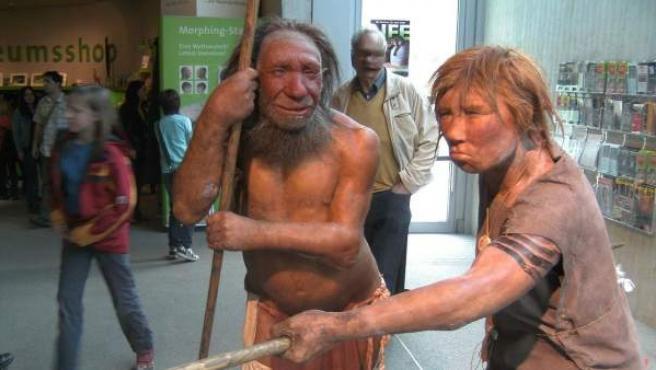 Recreación de dos individuos Neanderthales en el Neanderthal Museum de Düsseldorf, Alemania.