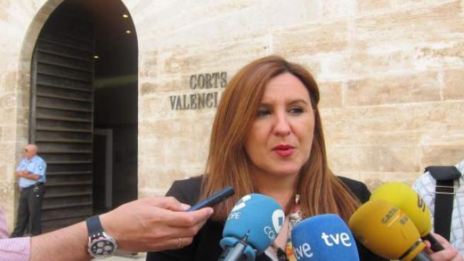 Maria José Català atén als mitjans davant les Corts
