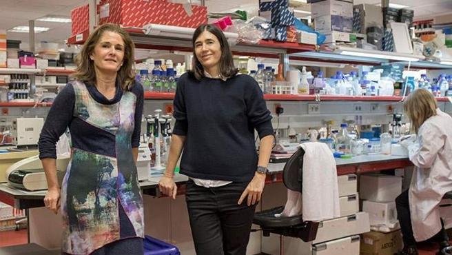 Paula Martínez (izq.) y Maria A. Blasco (drcha.), principales autoras de la investigación que ha encontrado la cura de la fibrosis pulmonar en ratones.