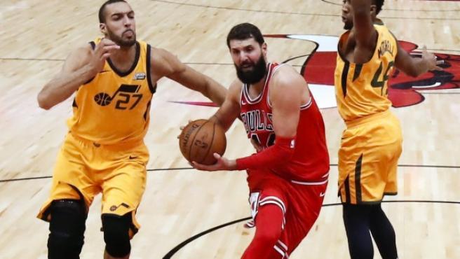 Nikola Mirotic entra a canasta ante Rudy Gobert y Donovan Mitchell en el Chicago Bulls - Utah Jazz.