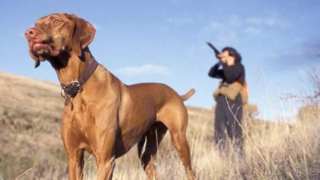 Imagen de archivo de un cazador junto a su perro de caza.