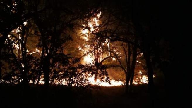 Incendio en Serra de San Madede (Ourense)