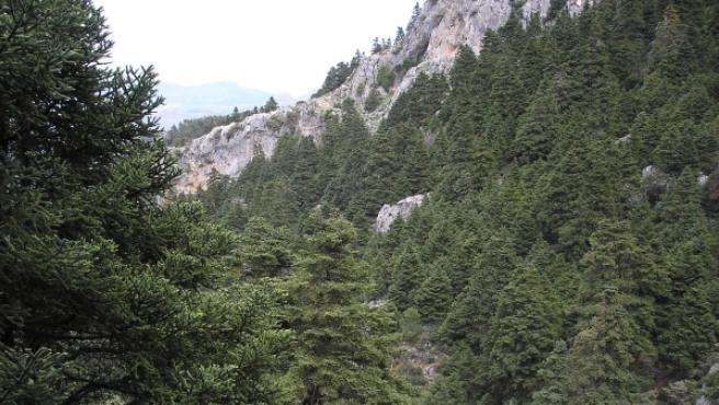 Futuro Parque Nacional de Sierra de las Nieves.