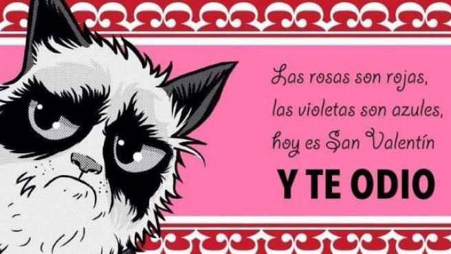 10 Frases Anti San Valentín Para Celebrar El 14 De Febrero 2018