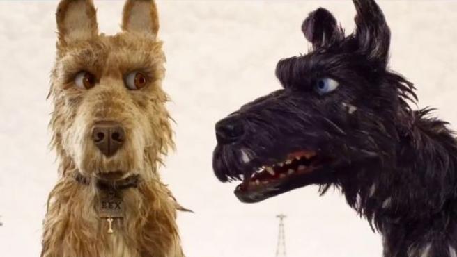 Fotograma de Isla de perros, lo nuevo de Wes Anderson.
