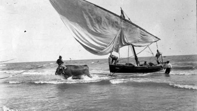 Imatges de l'exposició fotogràfica 'València en blanc i negre III. El Cabanyal'.
