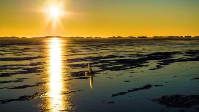 El hielo marino que rodea la Antártida y que se descongela durante el verano austral.