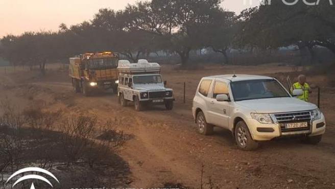 Incendio forestal en La Granada de Riotinto